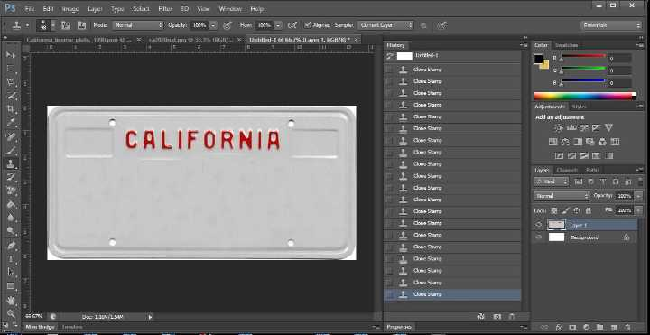 Fake license plates that look real