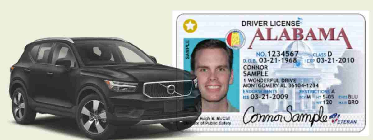 How long can you drive with expired license
